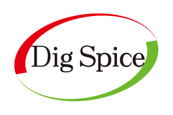 DigSpice